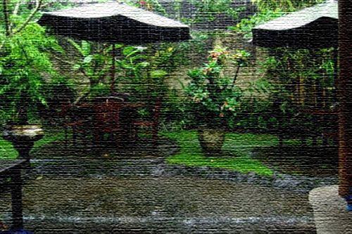 Дождливый период на Бали