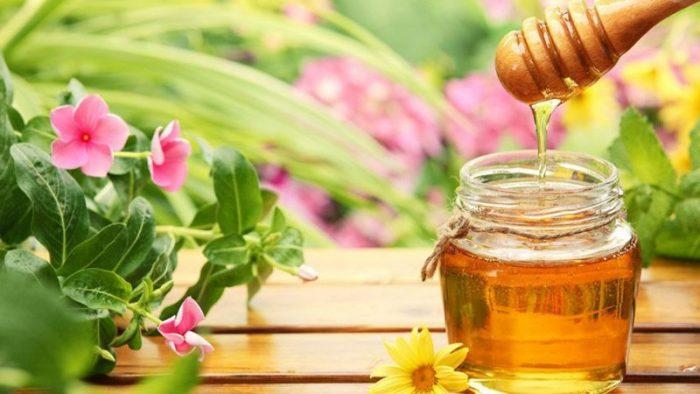 Медовые туры в Черногории