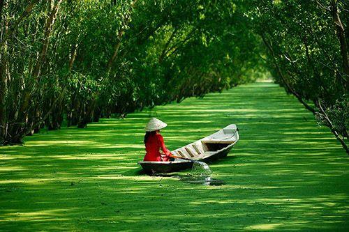 Самая длинная река и рисовая житница – Дельта Меконга