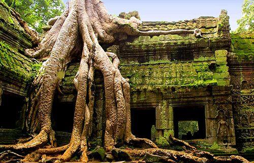 Камбоджи в топе дешевизны и экзотики