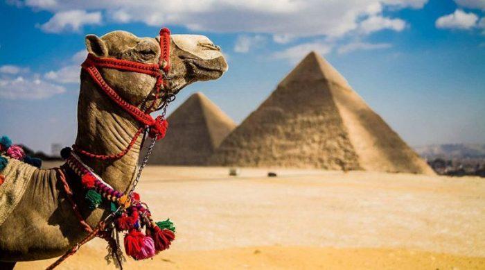 Всемирные туристические организации уговаривают вернуться на курорты Египта
