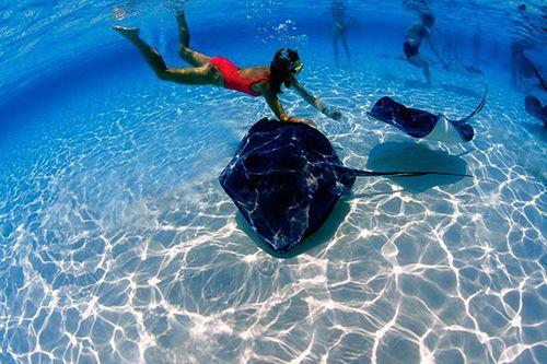 Чем занять себя на курортах Доминиканы?