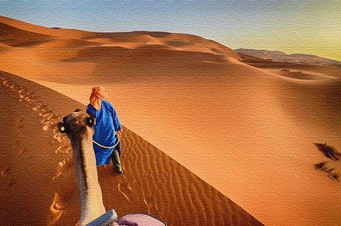 Чем заняться в Марокко