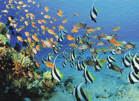 Морские курорты Египта