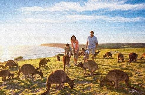 Отзывы туристов о поездке в Австралию