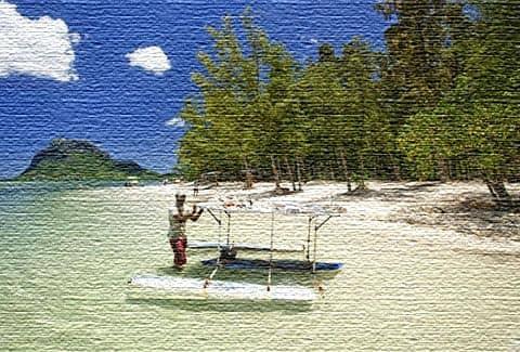 Отзывы туристов посещении Маврикия
