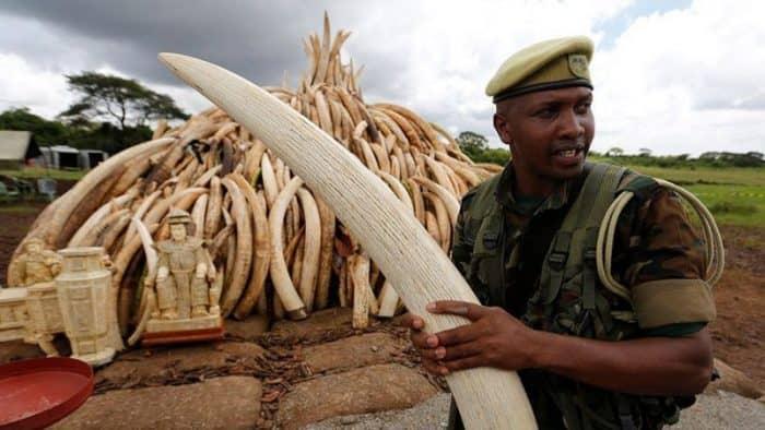 Федерация туризма Кении гарантирует безопасность для туристов