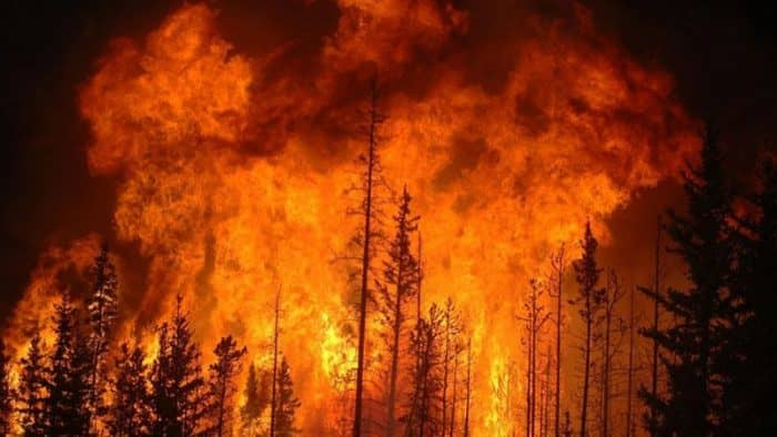 Новые пожары в Албании - более 8 новых очагов возгорания