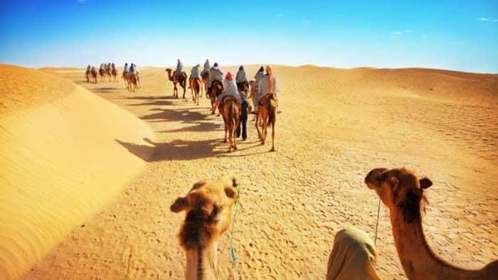 Пассажирские перевозки в Тунисе в июле выросли на 22,7%