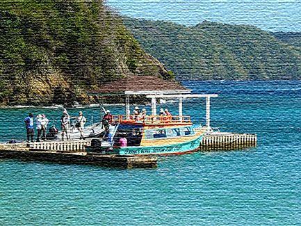 Экологический туризма на острове Тобаго