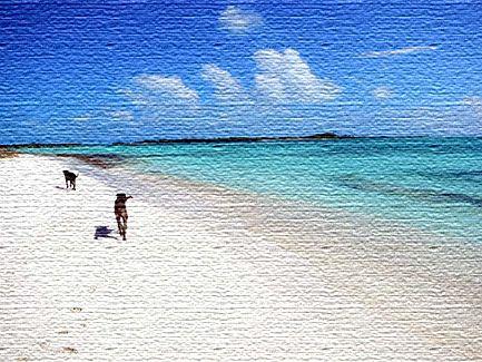 Морские курорты Венесуэлы