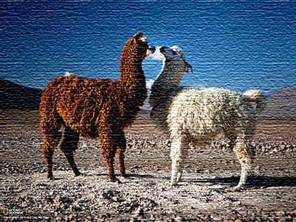 Общее представление о Боливии