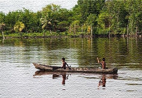 Отзывы путешественников о Гайане
