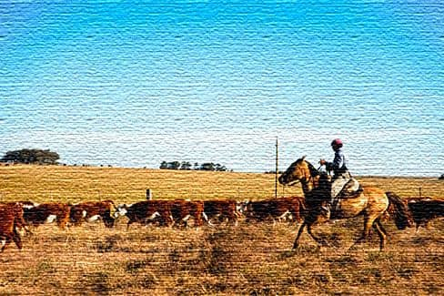 Отзывы туристов о посещении Уругвая
