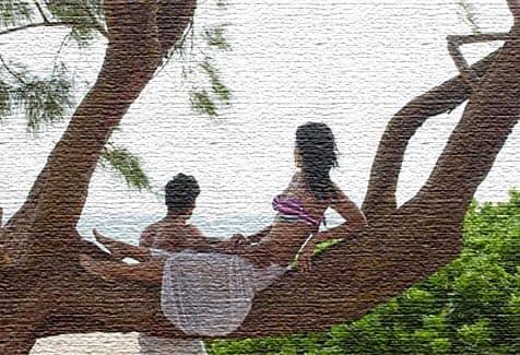 Развлечения на острове Барбадос