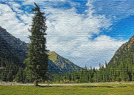 Экологический туризм в Кыргызстане