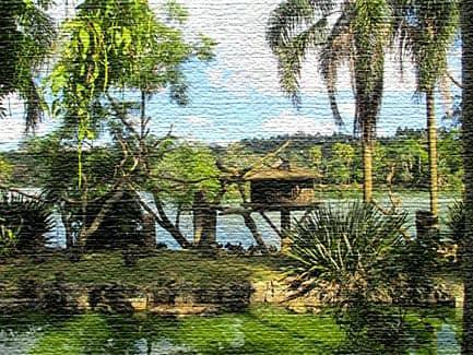 San Paulo Zoo - популярный зоопарк Бразилии