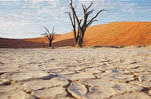 Опасности и предостережения при посещении Намибии