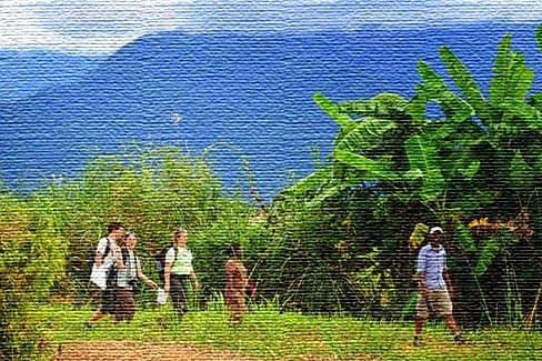 Отзывы туристов о посещении Танзании