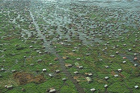 Экологический туризм в Бенине (фото)