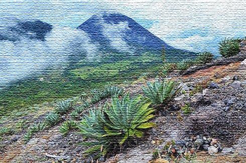 Экологический туризм в Сальвадоре (фото)