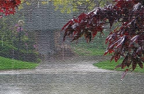Красный Дождь, Керала