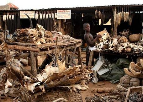 Ломе-базар, Того, Африка (фото)
