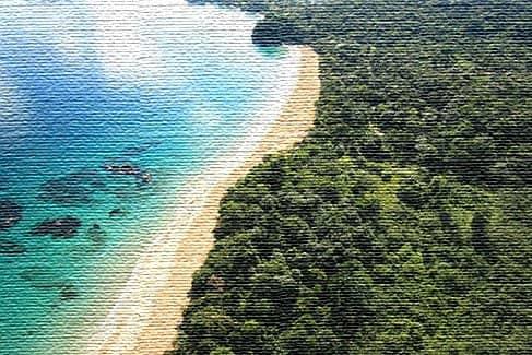 Национальный морской парк Исла-Бастиментос, Панама (фото)
