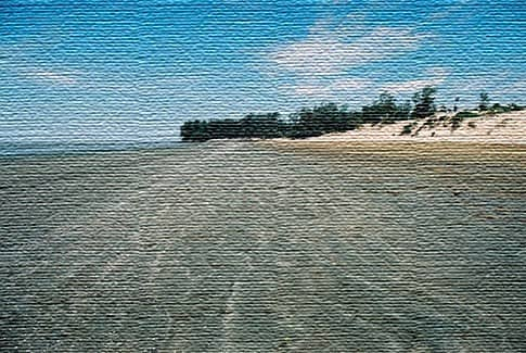 Пляж Чандипур, Орисса