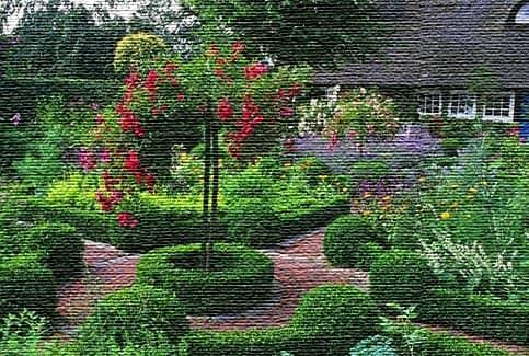 Цветы и живописные клумбы (фото)