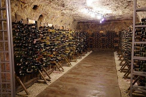 Музей вина (Плевна) (фото)