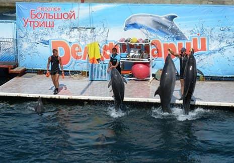 Анапский дельфинарий (фото)