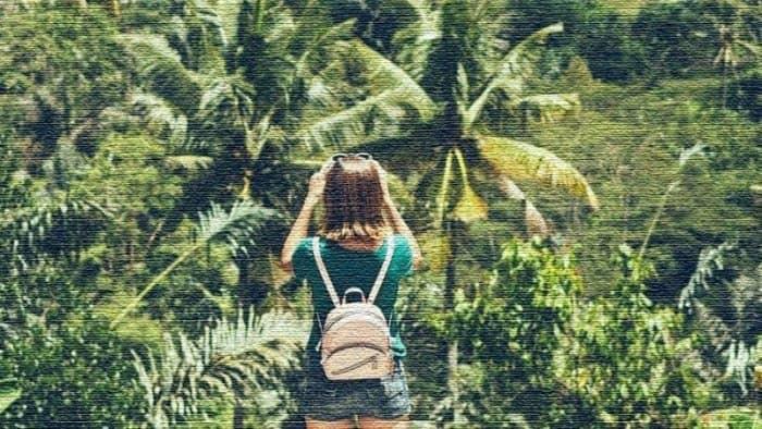 Индонезия станет глобальным туристическим направлением для вегетарианцев (фото)
