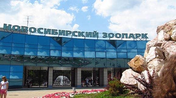 Размещение и развлечения в курортном Новосибирске (фото)