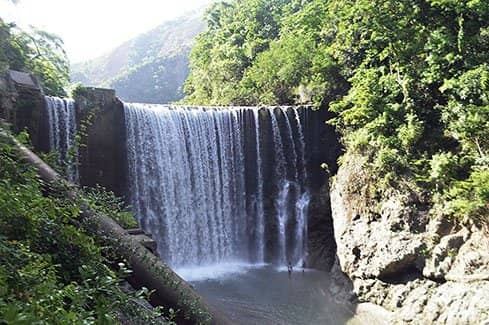 Reggae Falls (фото)