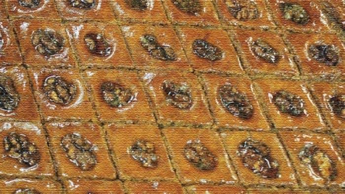 Турецкие повара установили новый рекорд Гиннеса, приготовив самую большую пахлаву (фото)