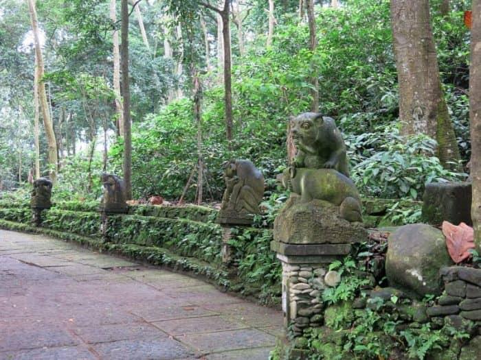 «Лес обезьян»