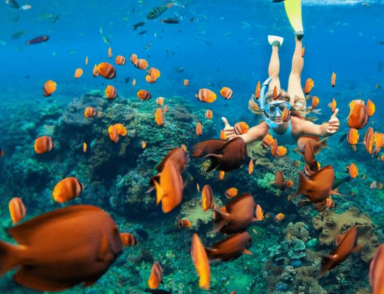 Бали экскурсия