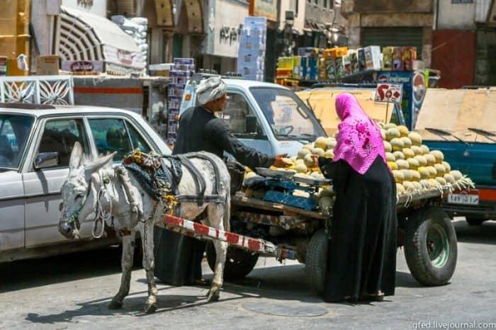 Культура Каира