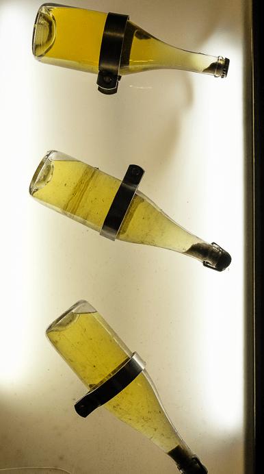 Осадок шампанского