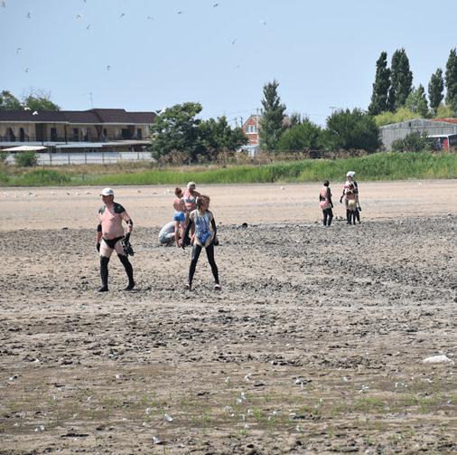 Озеро грязевое