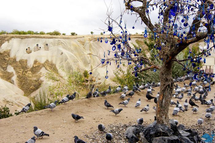 долина голубей