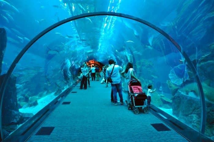 Дубайский аквариум
