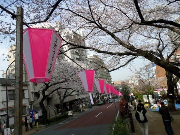 Фестиваль вишни