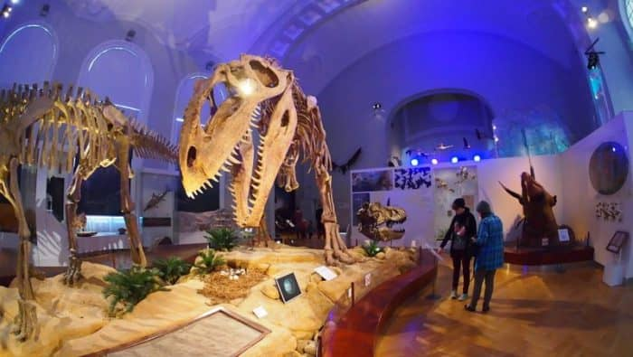 Музей Хельсинки