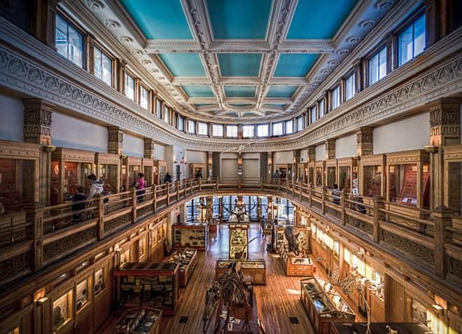 Музей Радпат