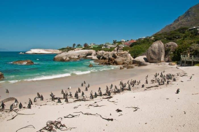 Пляжи Кейптауна