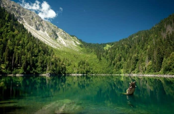 Рицинский реликтовый национальный парк