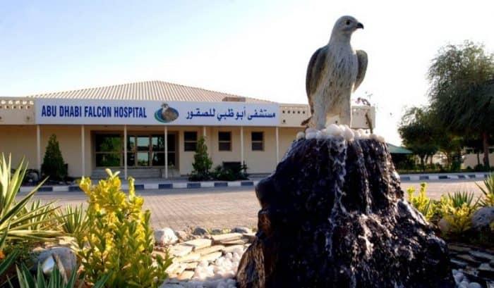 Соколиный госпиталь