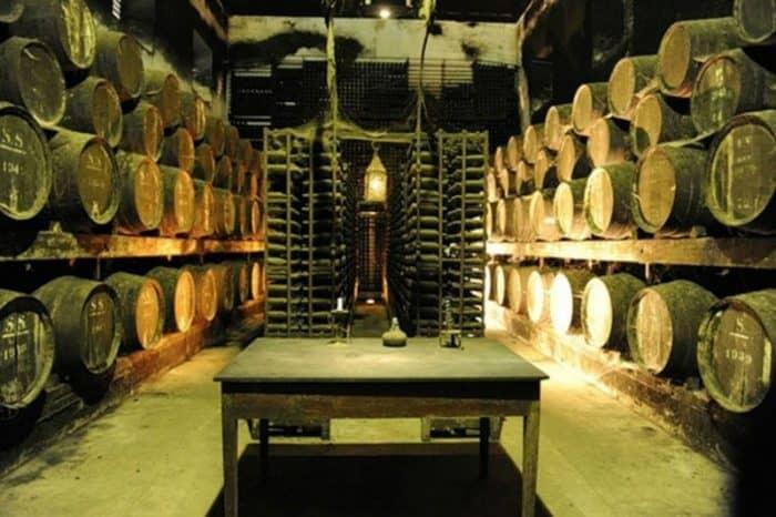 винодельне Casa Ramos Pinto